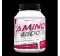 Amino 4500 Toidulisandid
