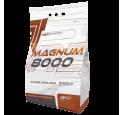 Magnum 8000 4000g Toidulisandid